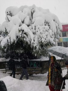shimla-beautiful-snowfall