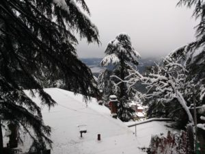 shimla-december-snowfall-view