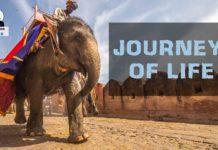 Beautiful-Journey-of-life