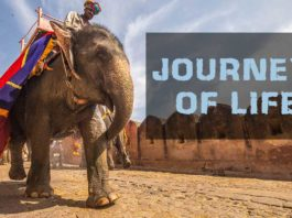 Beautiful-Journey-of-life
